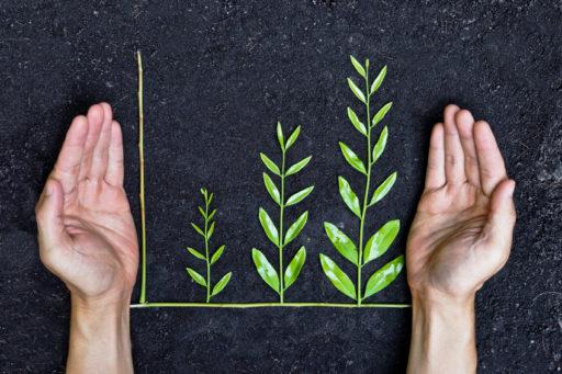 55 procent av småföretagen arbetar hållbart