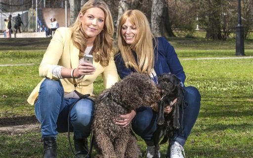De har skapat ett Facebook för hundägare