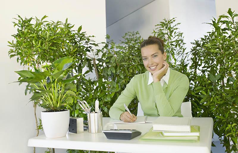 7 tips som gör ditt företag lite grönare