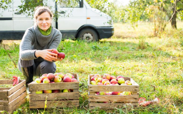 """""""Småföretag kan rädda landsbygden"""""""