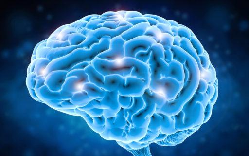 Ta kontroll över hjärnan