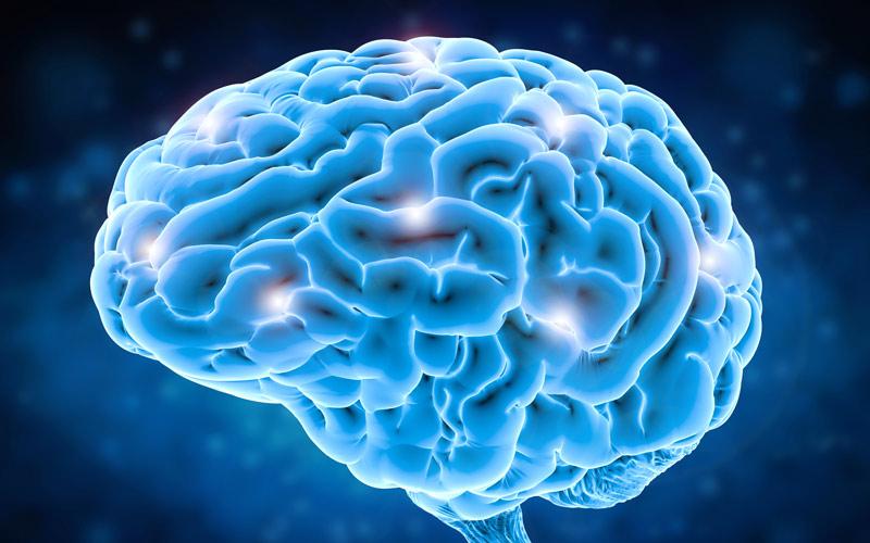 <![CDATA[Lura hjärnan och bli mer effektiv. Foto: Getty Images]]>