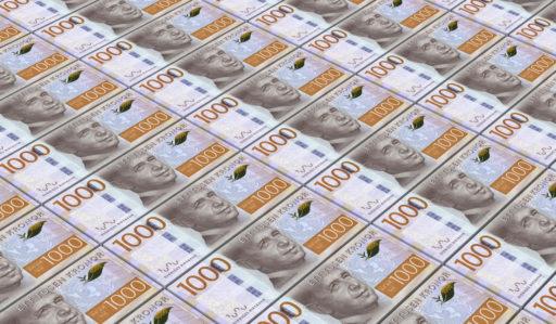 Fler enskilda firmor ska kunna låna pengar –Riksbanken sätter av pengar